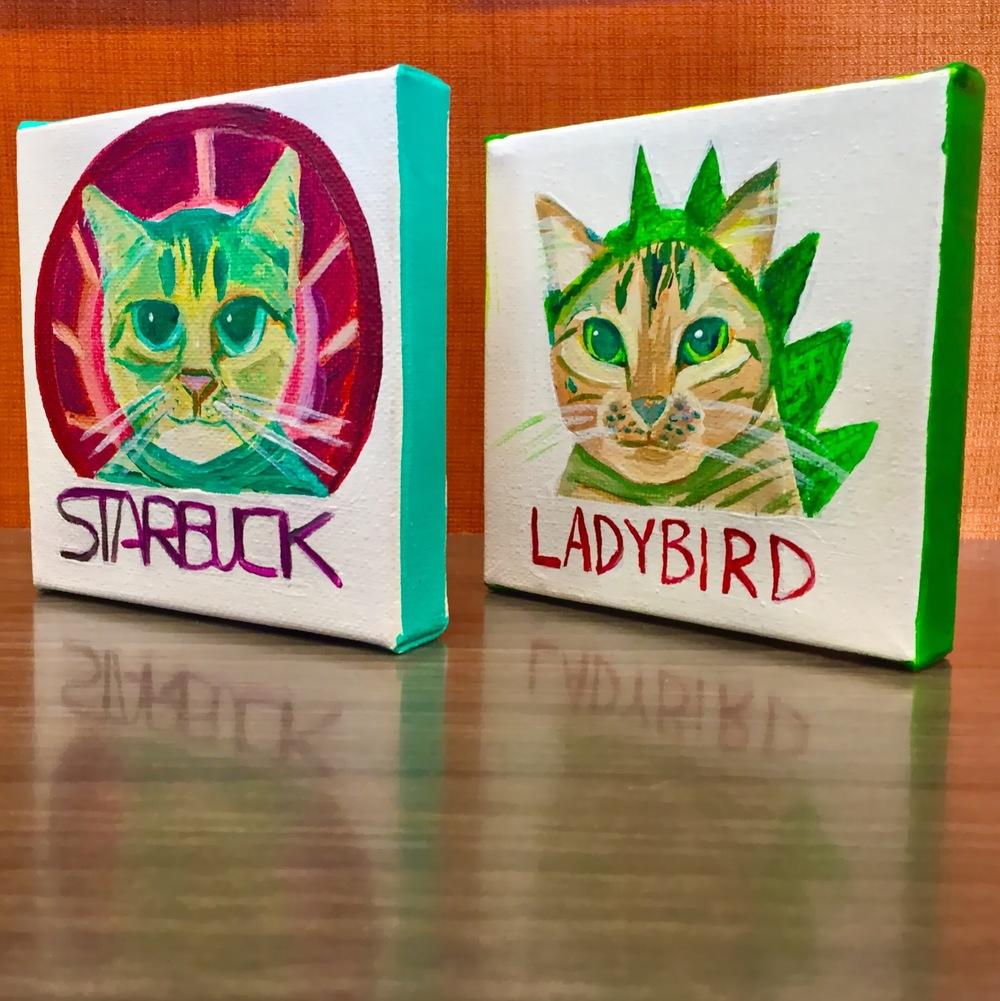 Starbuck and Ladybird