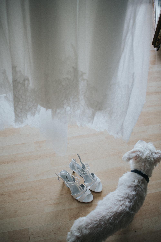 Brautkleid mit Brautschuhen und Hund