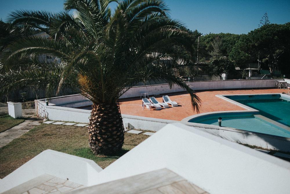 fontanelas-palm-close-to-pool.jpg