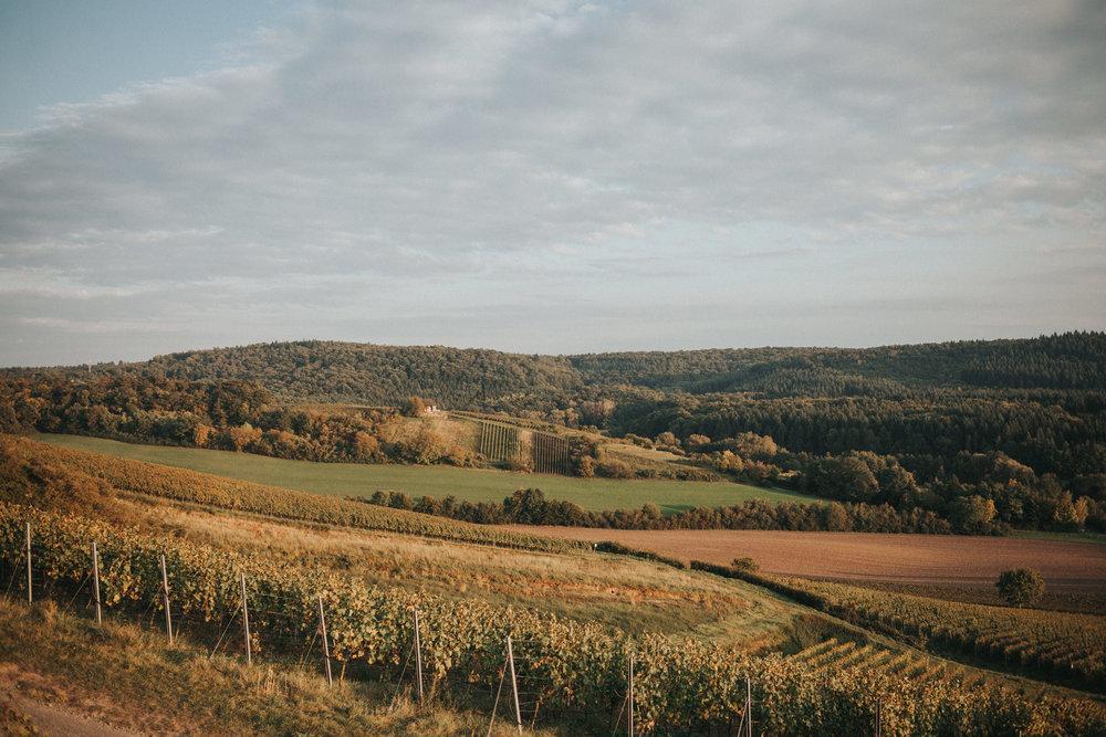 Weinberge nahe der Burg Ravensburg bei Sulzfeld