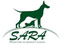 Sara protectora