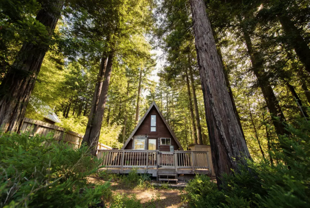 Cosy A-Frame Cabin in the Redwoods - Cazadero .png
