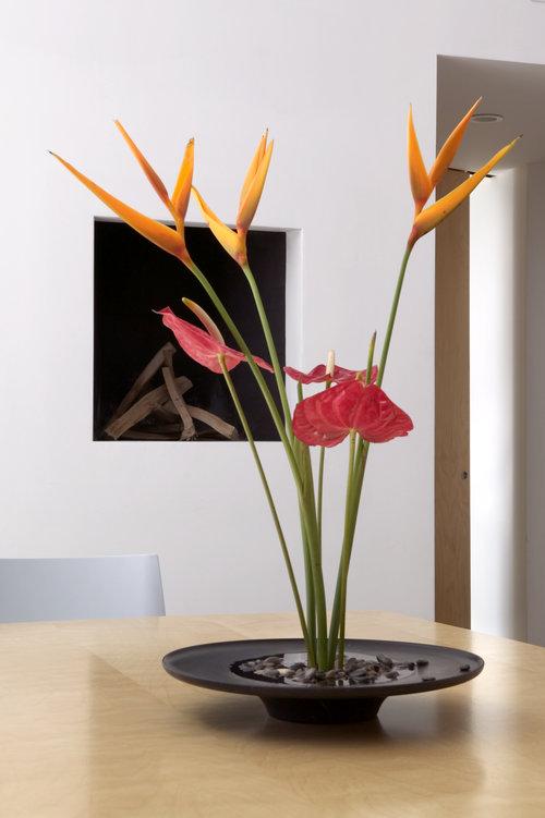 Modern Furniture Albuquerque about damian velasquez, modern furniture designer — modern