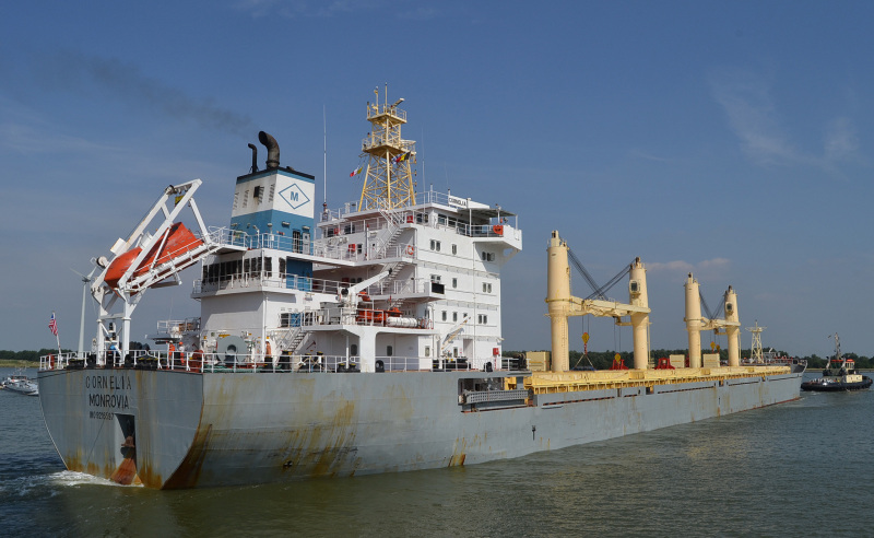 The Liberian Registry – the second largest in the world – includes over 3900 ships of more than 131 million gross tons, which represents 11 percent of the world's ocean going fleet.  indigenous NATIVE,Liberians never given opportunity /consider to be Train as a Maritime officers for placement ,foreign crew on board called Liberians.