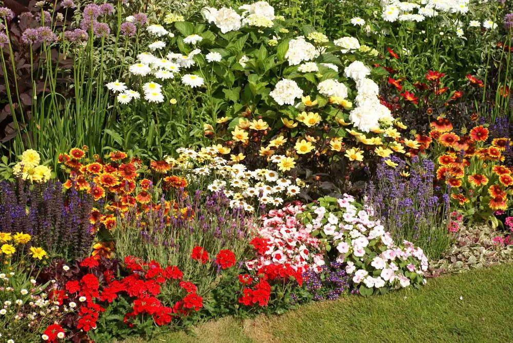 Jack Dunckley Hampton Court 2010 - 13.jpg