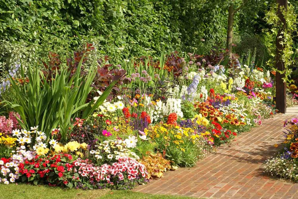 Jack Dunckley Hampton Court 2010 - 15.jpg