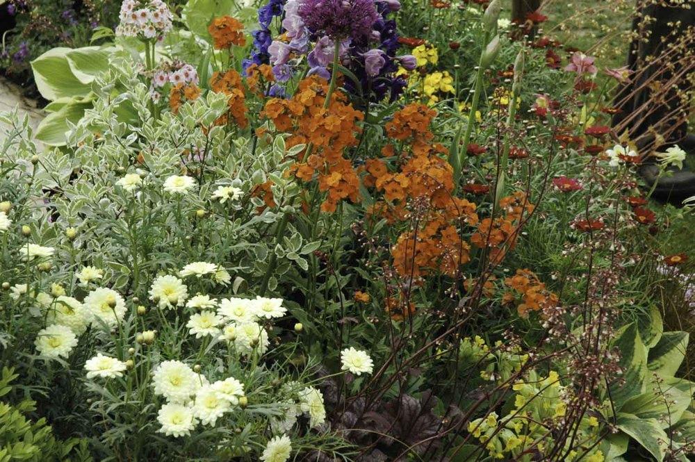 Jack Dunckley RHS Flower Show 2009 Malvern Spring - 5.jpg