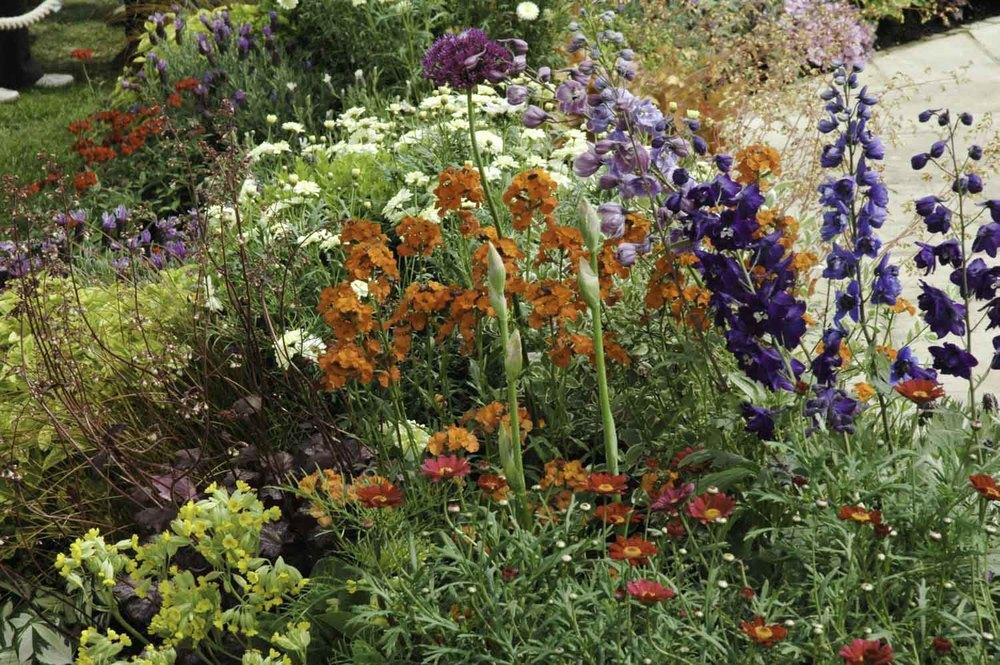 Jack Dunckley RHS Flower Show 2009 Malvern Spring - 9.jpg