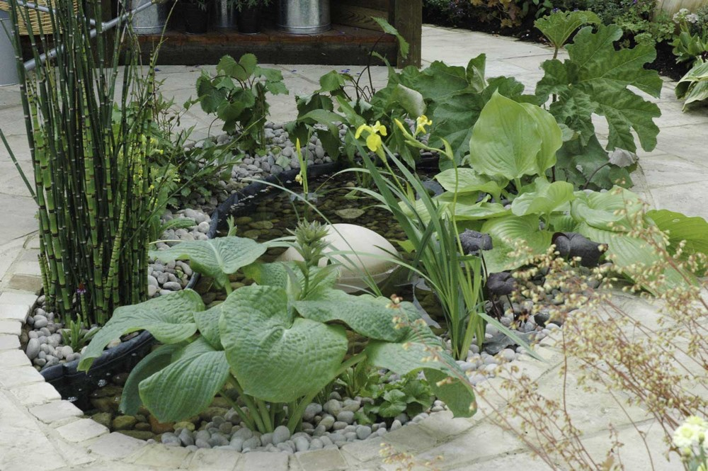 Jack Dunckley RHS Flower Show 2009 Malvern Spring - 11.jpg