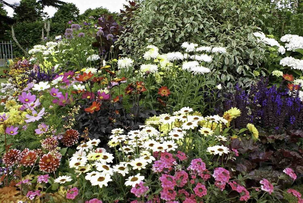 ©Jack Dunckley Landscape Design Garden Design RHS Hampton Court Palace Flower Show 2010 Birchfield Garden-12.jpg