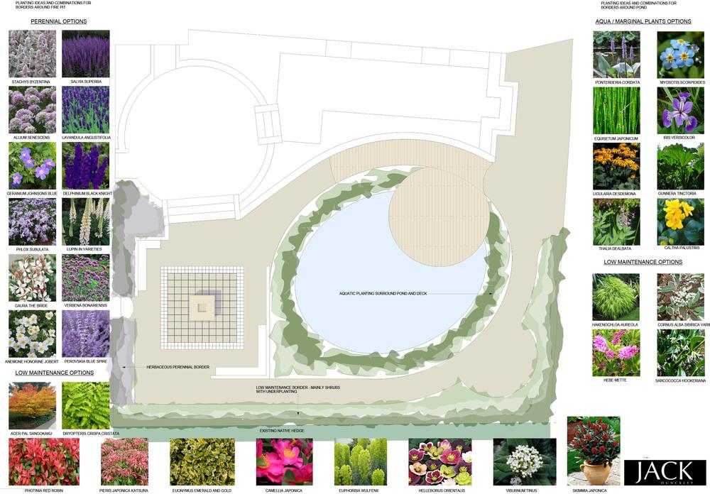 jack-dunckley-design-process-planting-plan-1.jpg