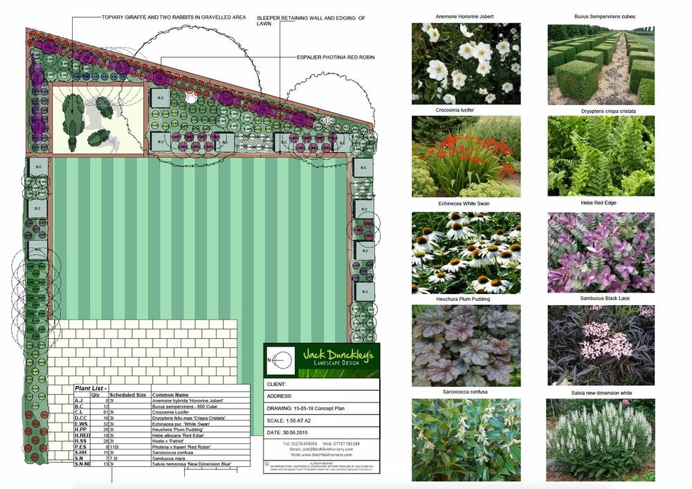 T - Rahkee Jain planting plan (low res).png