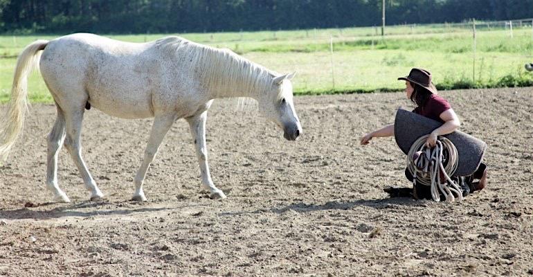 sabine-buehlmann-horsemanship-wadersloh.png