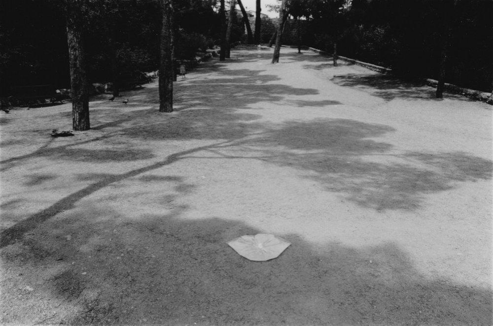 Parque Guell 1 © Olga de Soto - 1.jpg