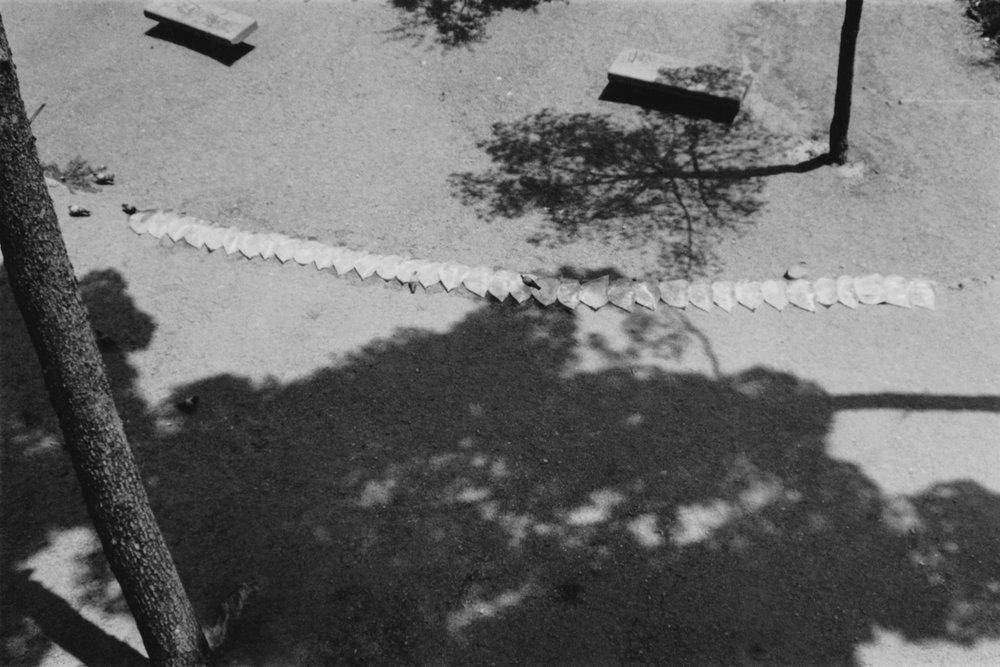 Parque Guell 4 © Olga de Soto - 1.jpg