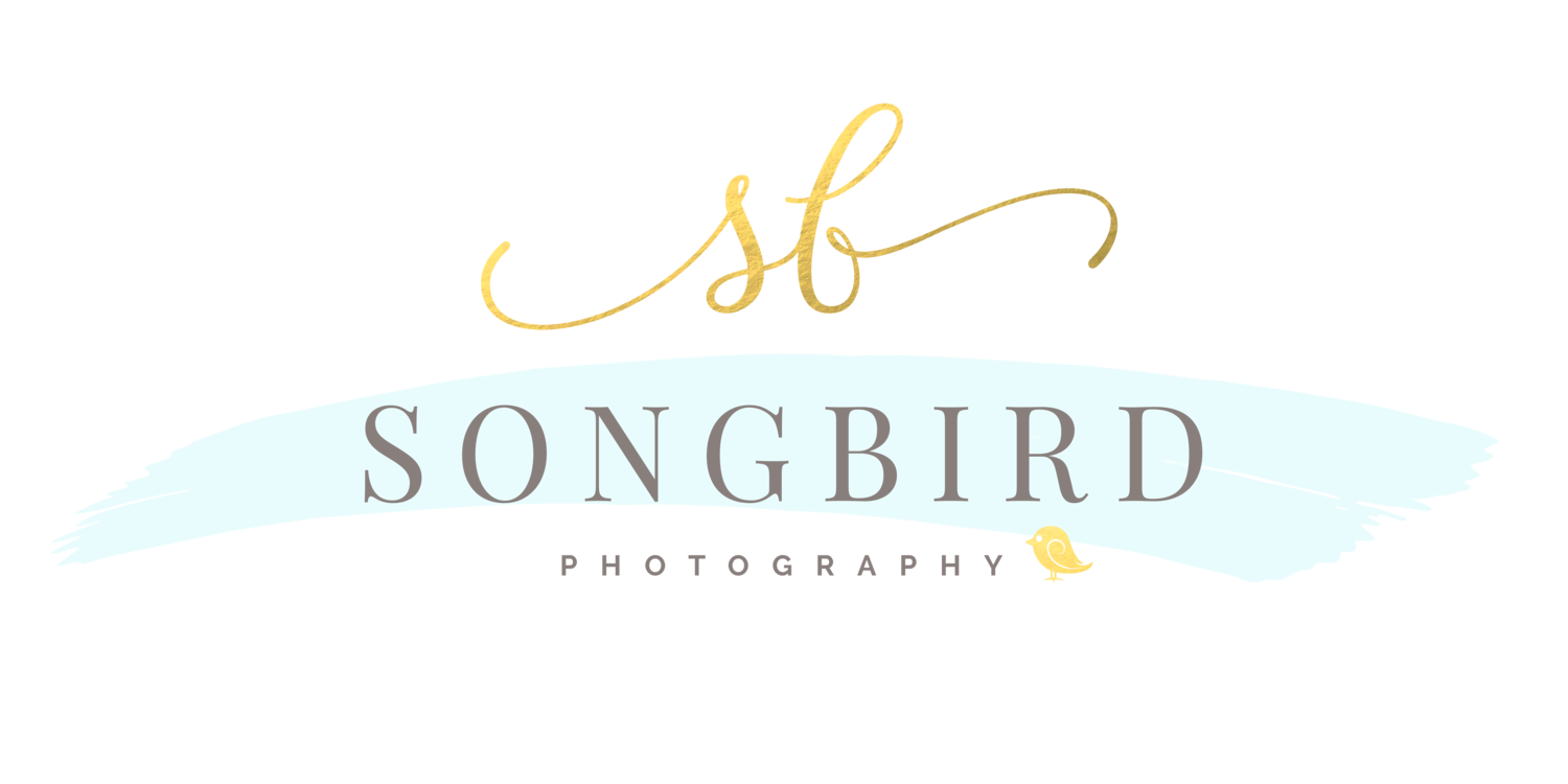 Songbird Photography