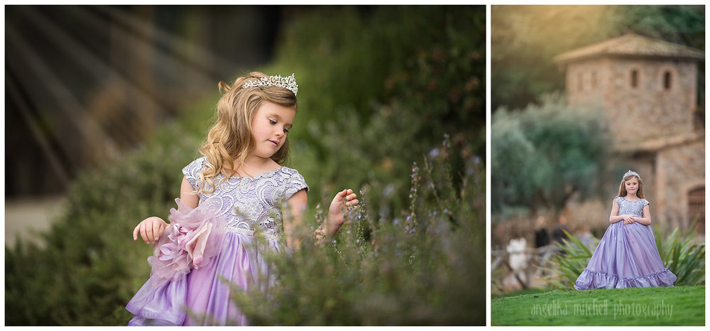 Princess Session Sonoma County Photographer Angelika Mitchell.jpg