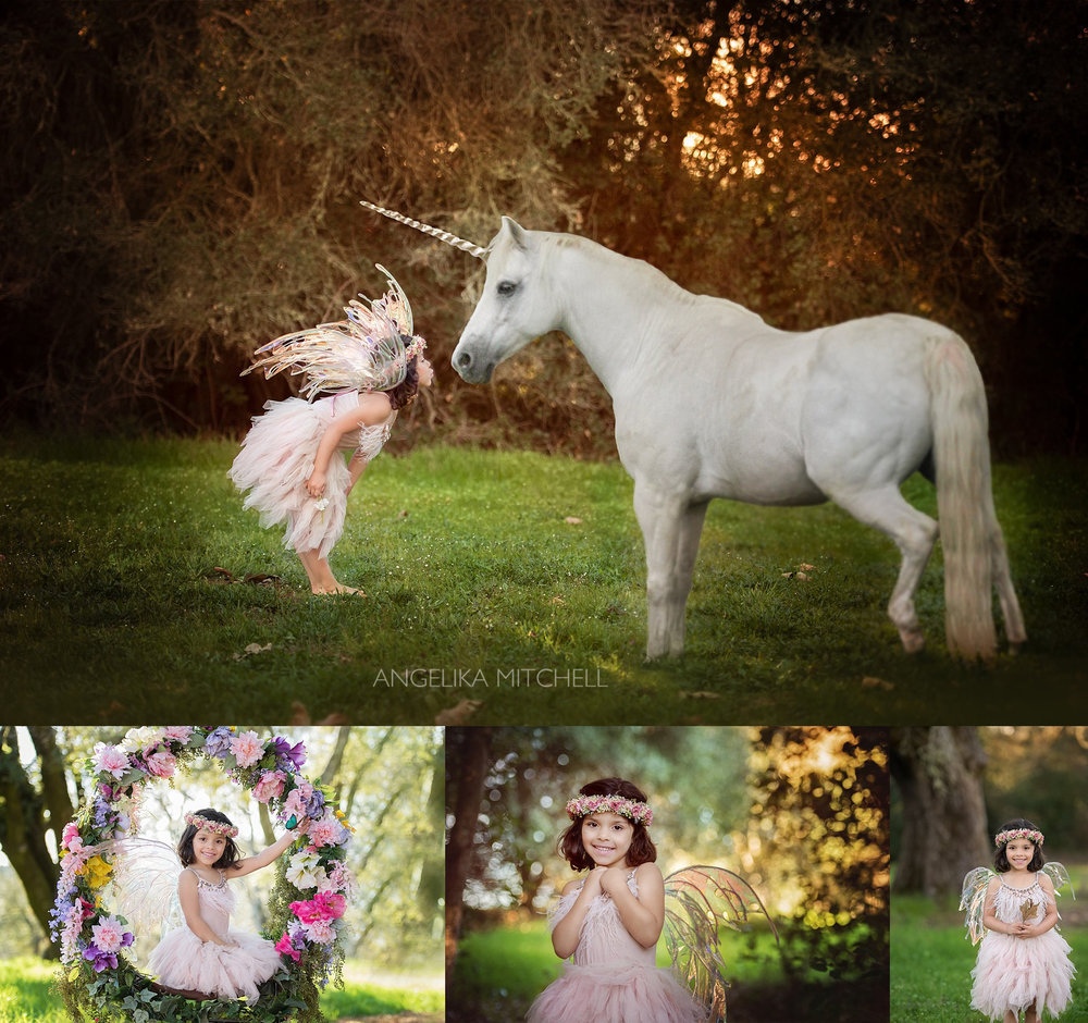 Fairy and Unicorn Photo- Santa Rosa Child Photographer Angelika Mitchell