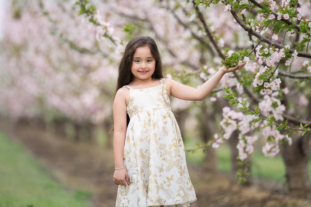 Khaleda Blossoms-2.jpg