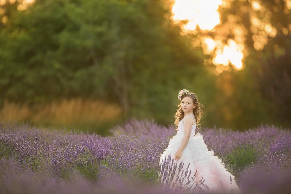 Davis Lavender-1.jpg