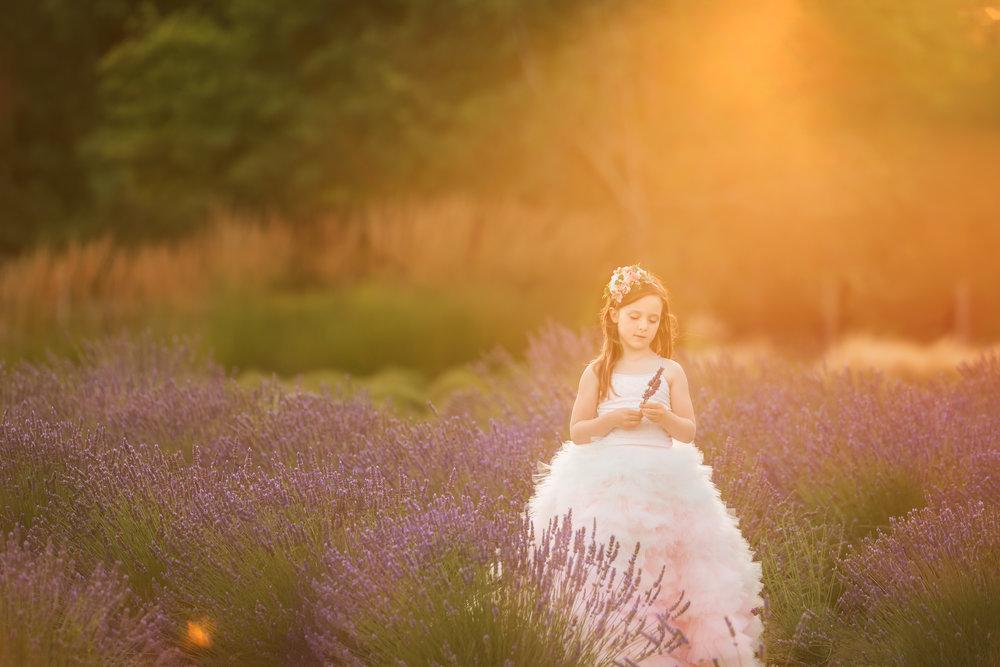 Davis Lavender-3.jpg