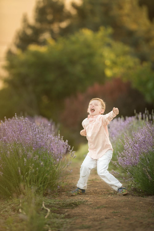 Davis Lavender-7.jpg