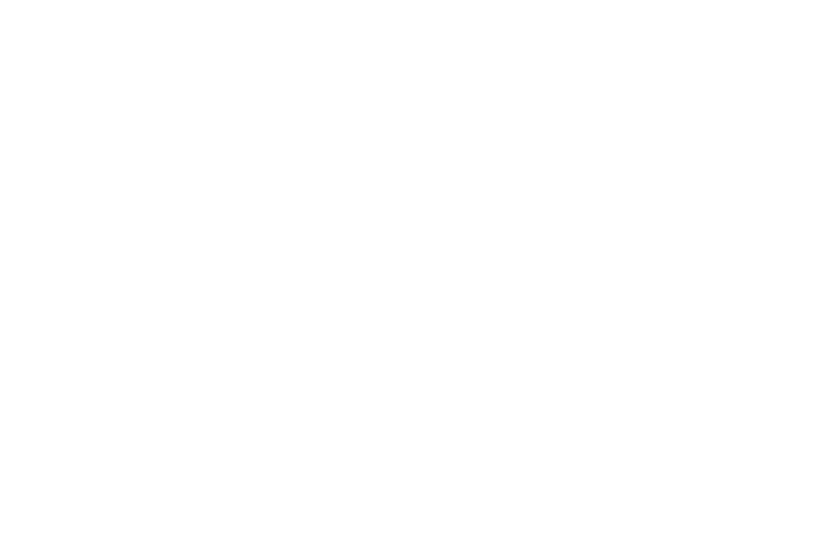 Varsity Investment Group