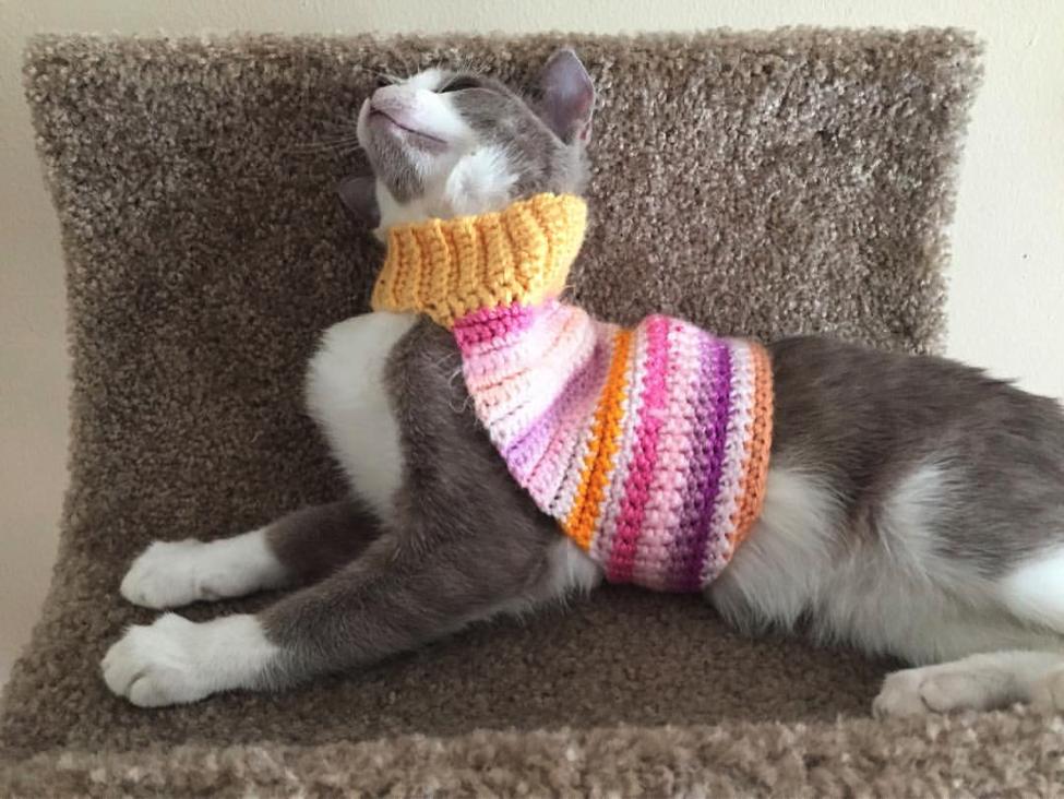 bizsweater.png