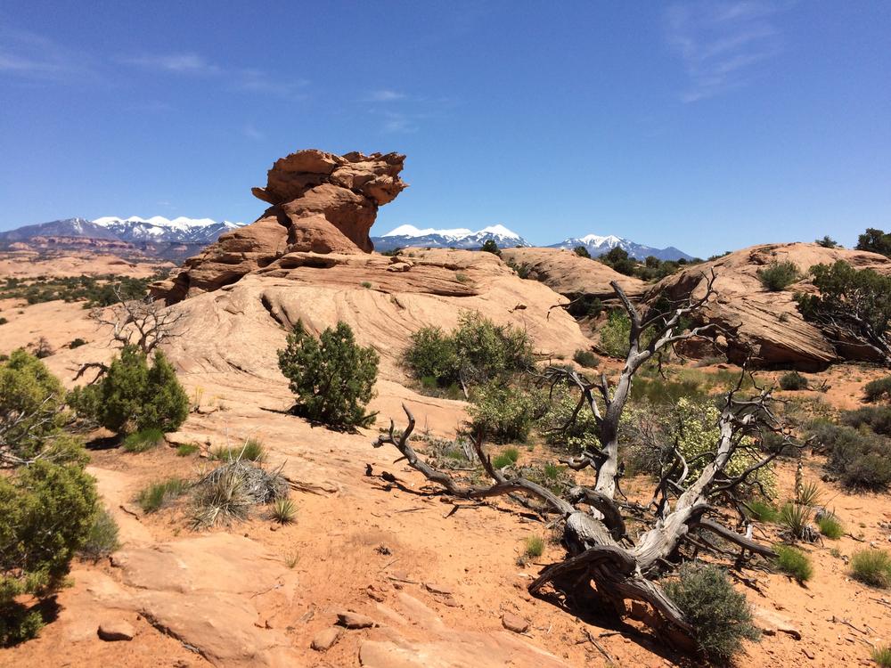 Rock formation near the start