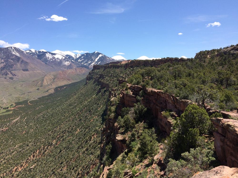 Porcupine Ridge