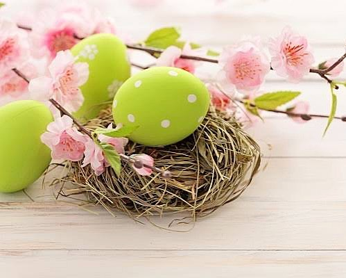 Happy Easter & Long weekend 🥚🍡 ~ We are OPEN tomorrow & Monday for any of your adjustment needs 🙌🏽 ~ Head to www.blossomchiro.com.au to book your appointment online ~ Wishing you a wonderful weekend in this beautiful weather 🌸