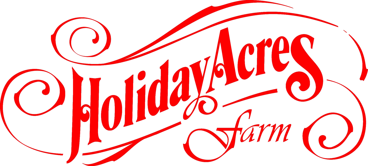 Holiday Acres Farm | Corn Maze | Petting Zoo | Family Attraction