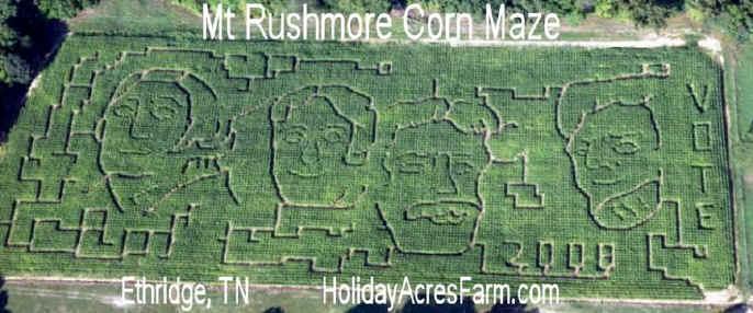 2008-Mt_Rushmore_Maze.jpg