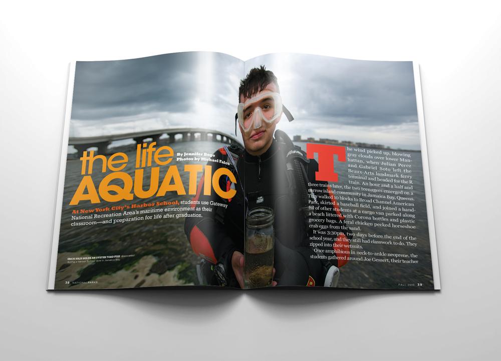 aquatic1r1.jpg