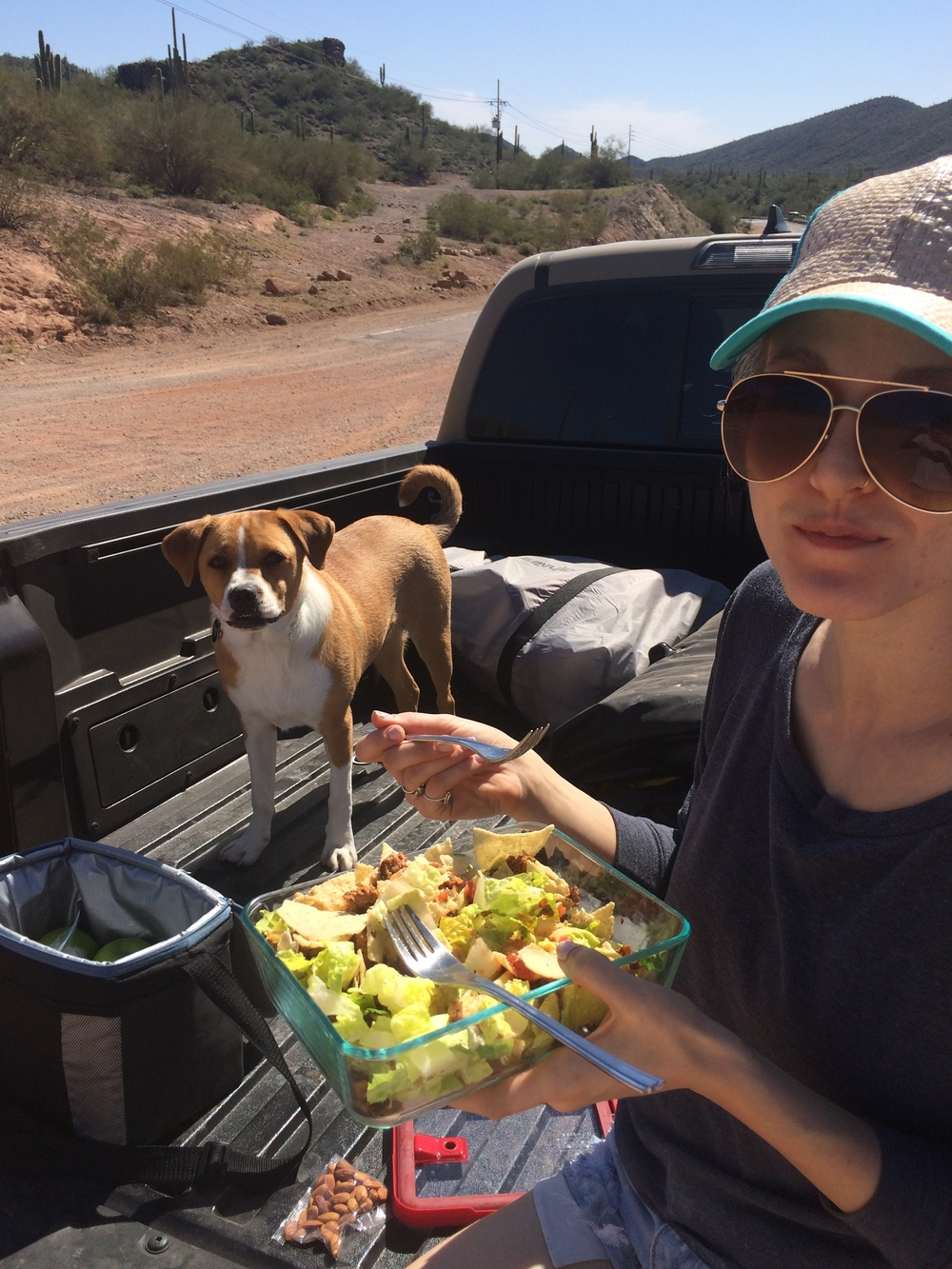 Picnic in the bed of the truck | Homemade taco salad with raw almonds and green apples