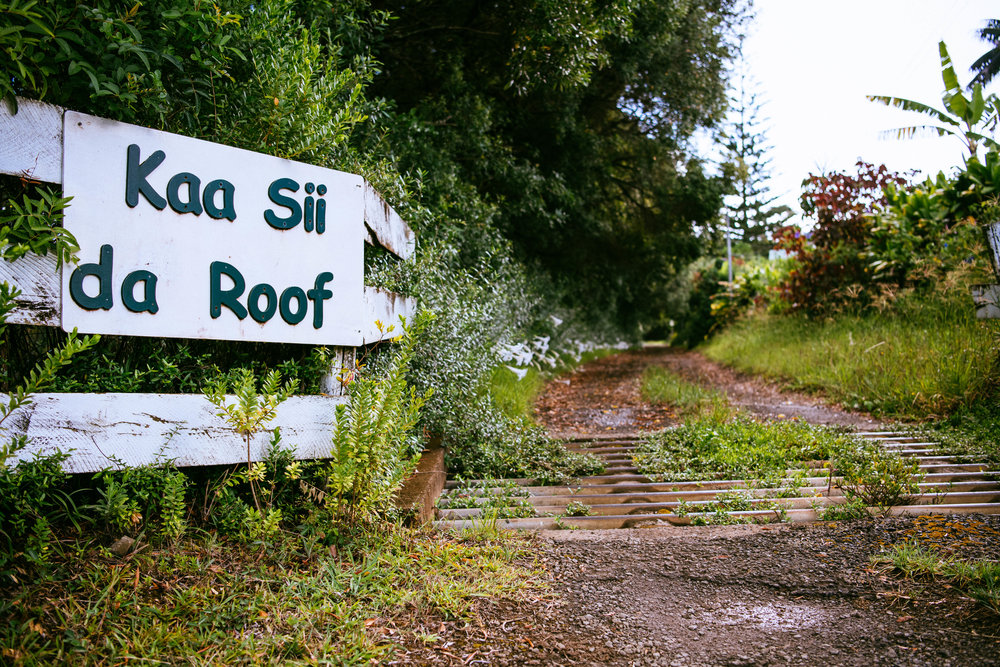 Roofs v3 - 11.jpg