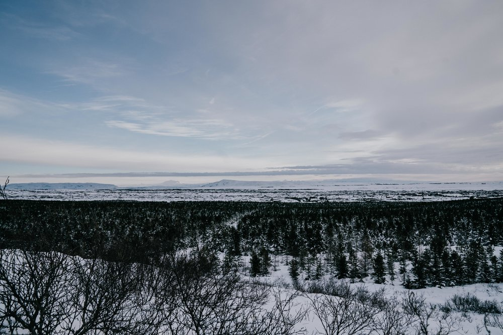 ICELAND-12.jpg