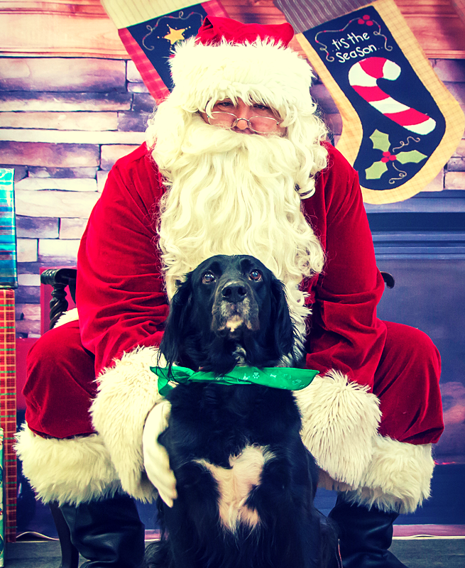 The Lovely Ms. Maddy and ol' Saint Nick. Photo courtesy of Dawn Clark