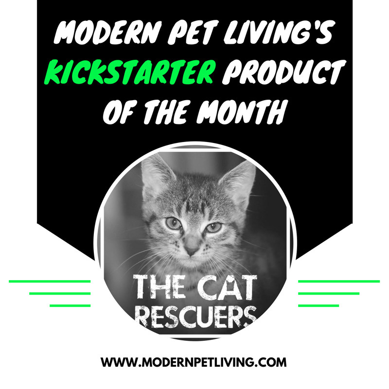 ALL PHOTO CREDIT TO KICKSTARTER AND THE CAT RESCUERS