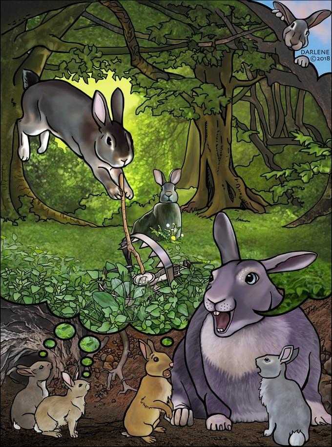 bunnies1.jpg