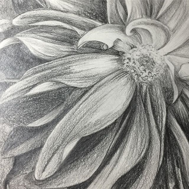 Flower drawing I did back in 2008. Maybe I will finish it now that it's been 10 years. #blessed #artist #artista #art #arte #praisethelord #godlygifted #amen #halo #btldrawings