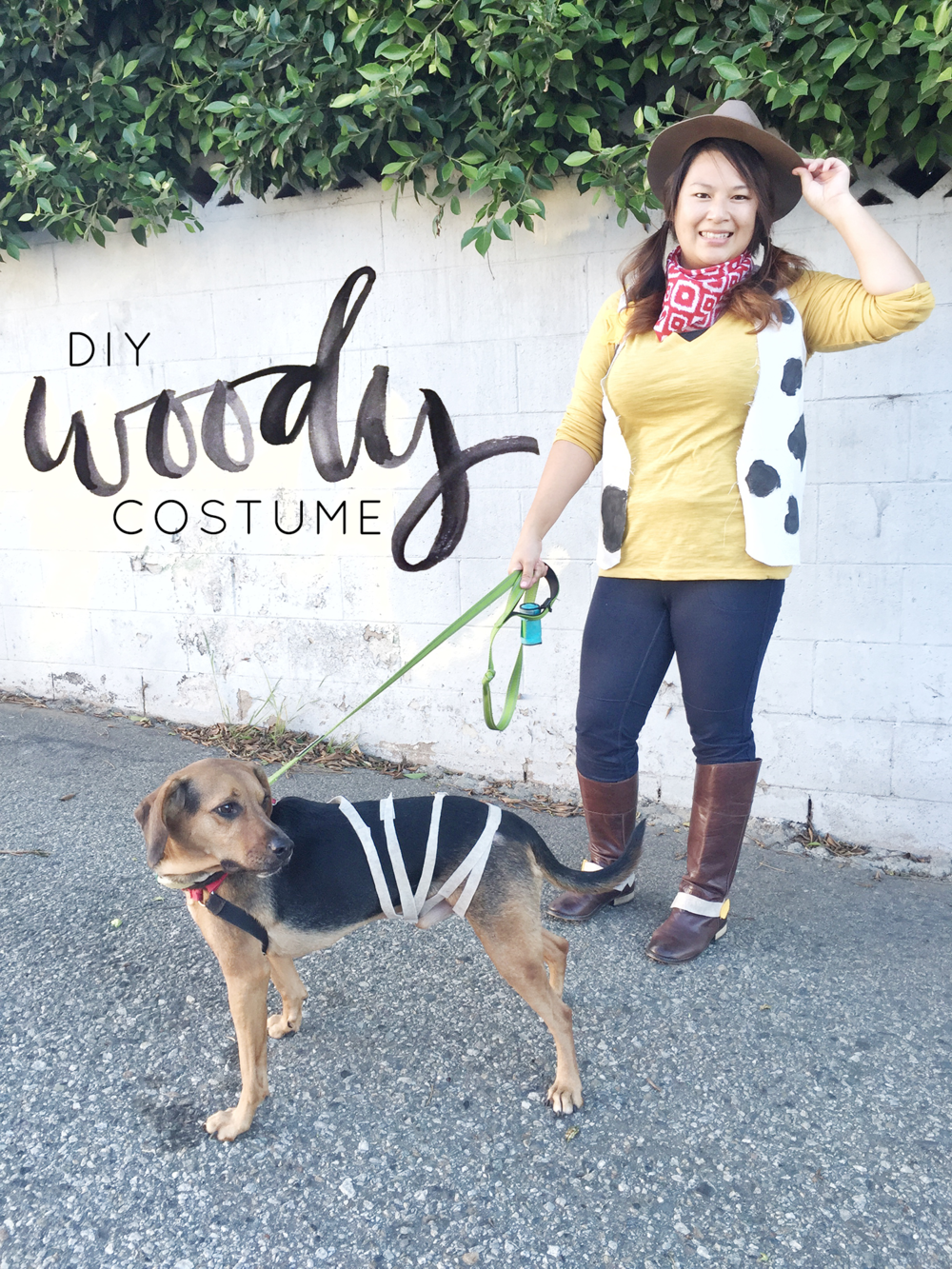 Diy hey love designs woody from toy story costume solutioingenieria Images