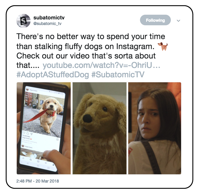 Twitter-Assets_Cassie-Lavo-Producer-Adopt-A-Stuffed-Dog-001.png