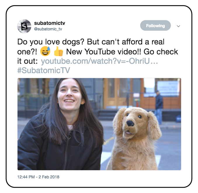 Twitter-Assets_Cassie-Lavo-Producer-Adopt-A-Stuffed-Dog-002.png