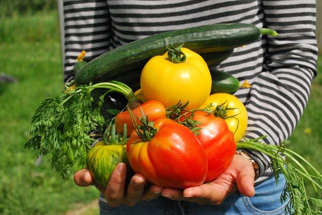 vegetables-742095_640.jpg