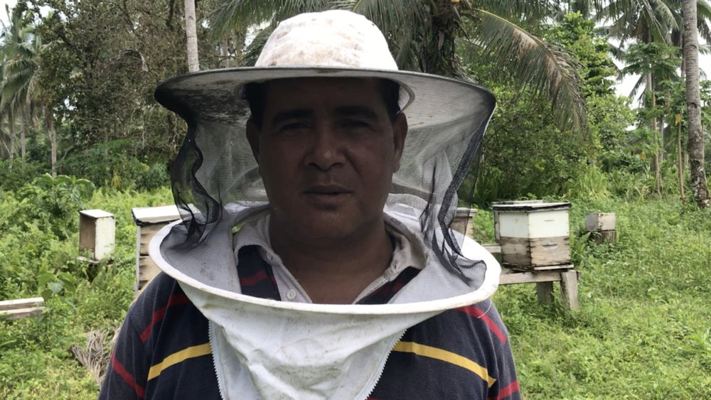 Japhet wanted to help his family and community find more sustainable options beyond mining so he went into the honey business. With dozens of hives, he earns a tidy profit and he's helping boost productivity of fruit trees.