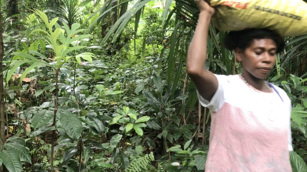 Several times a week Janet goes into the bush with a machete and a bag to fill up with rich soil from the forest floor. She takes it from the high ground on the island so it's not been impacted by the salty water from the sea.