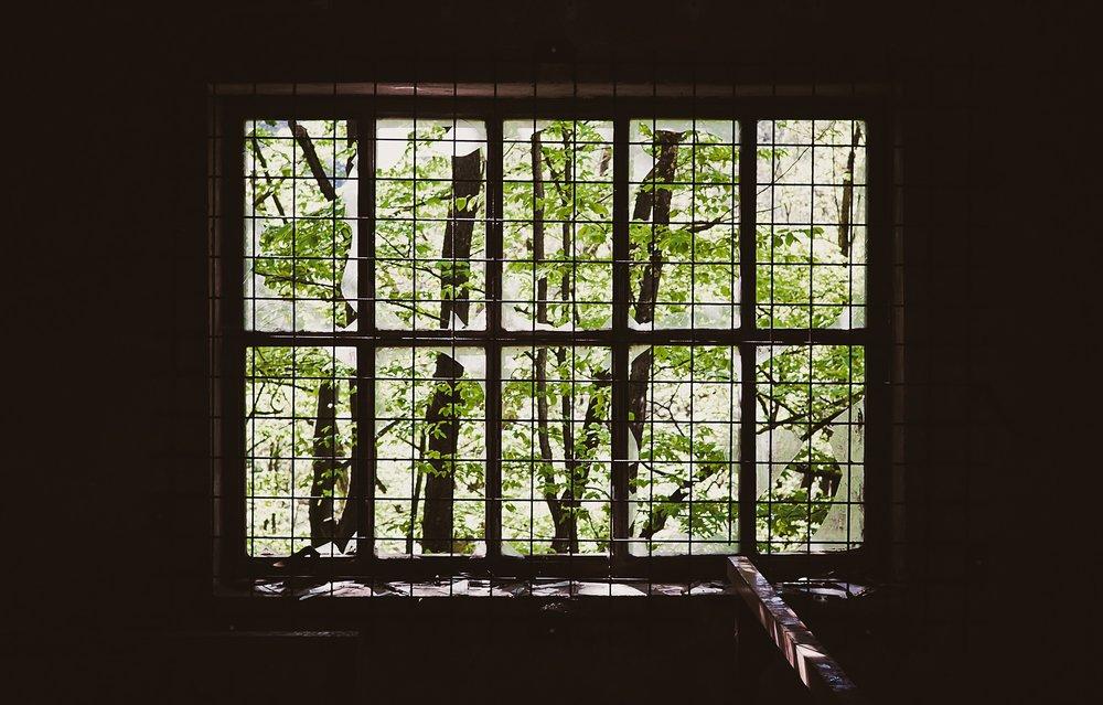 Unsplash_green-window.jpeg