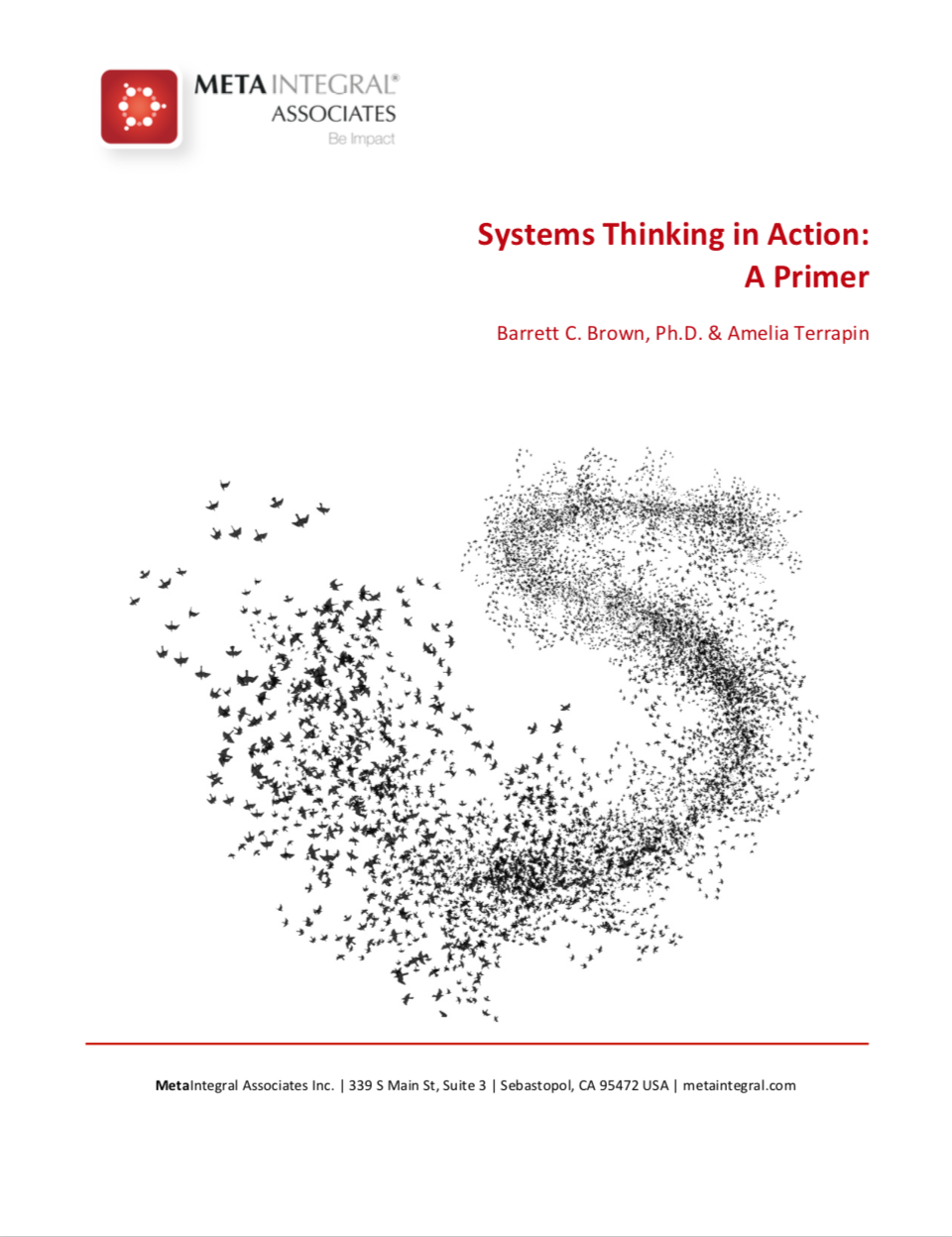 systems thinking in action: A primer - You are already a systems thinker to some degree. This article helps you further discipline your mind to see the wholes, patterns of change, and relationships, while letting go of the fragmentation, silos and those old-school, linear ways.