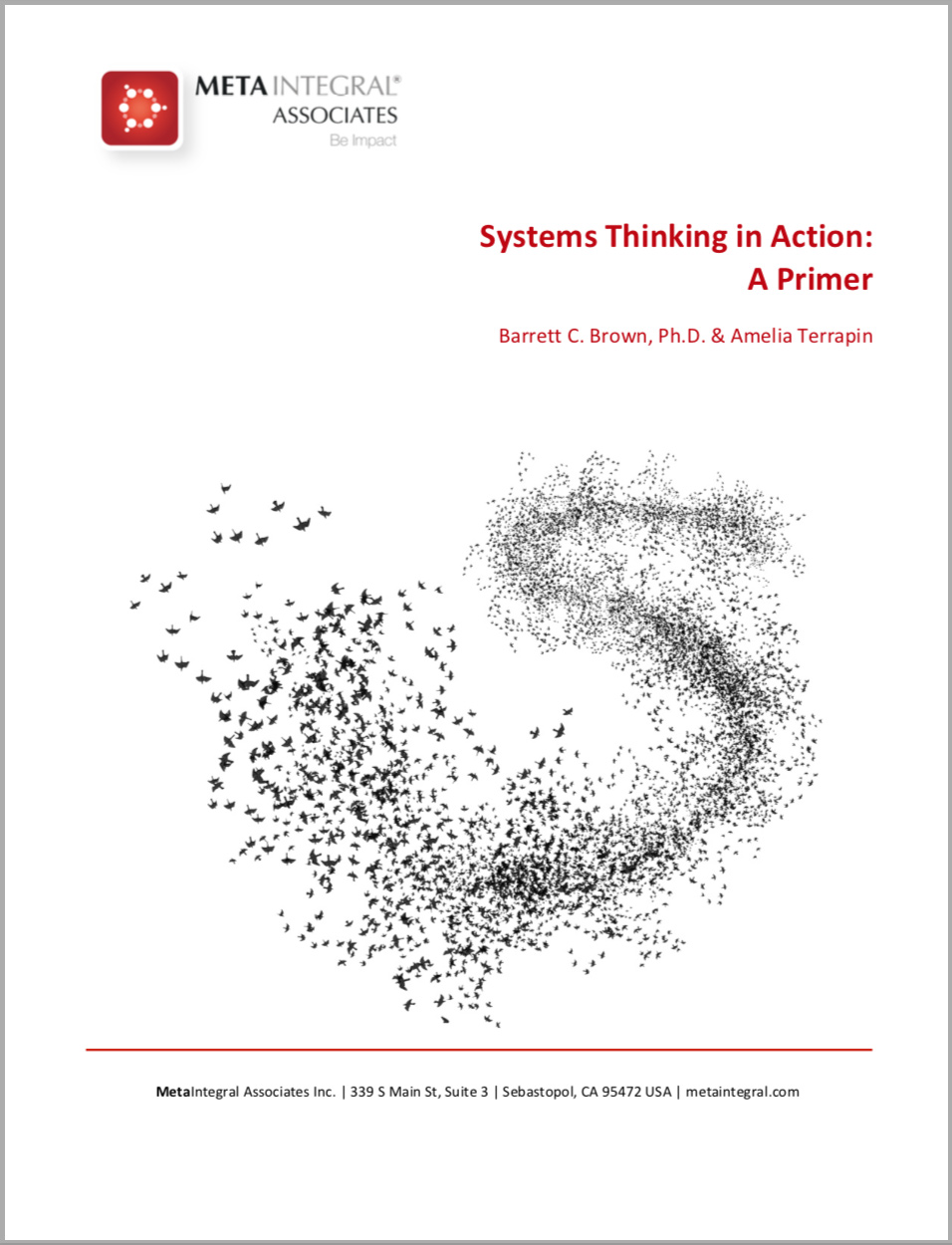 article-systems-thinking-primer.jpg